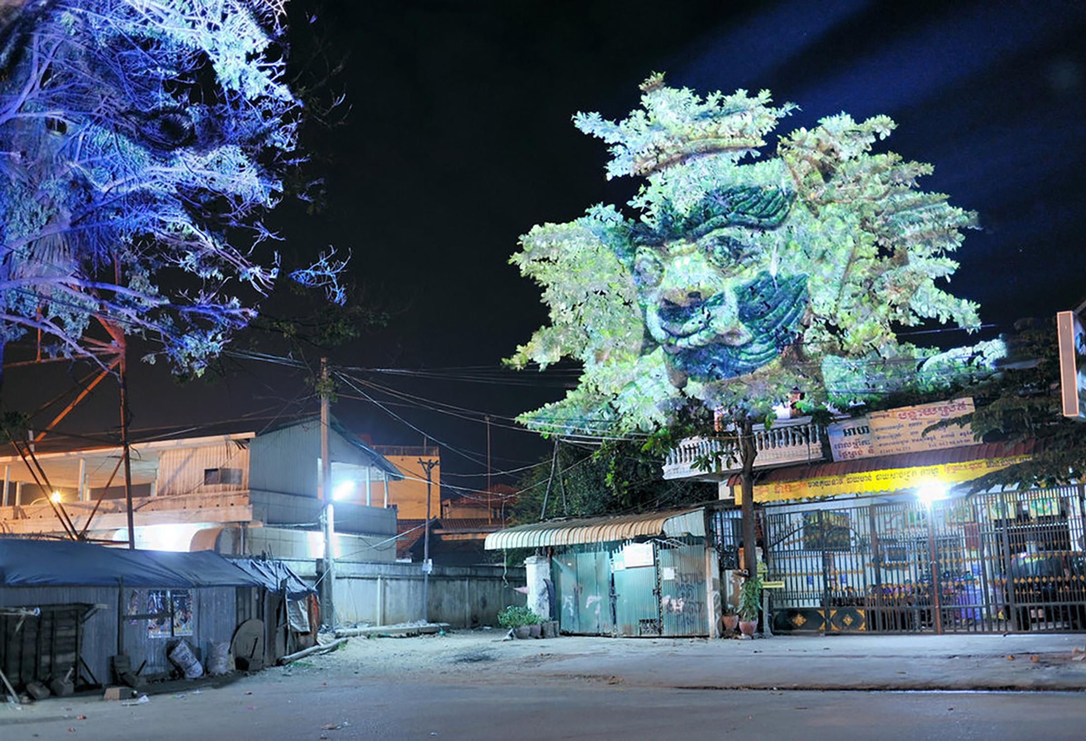 Cambodian Trees 03