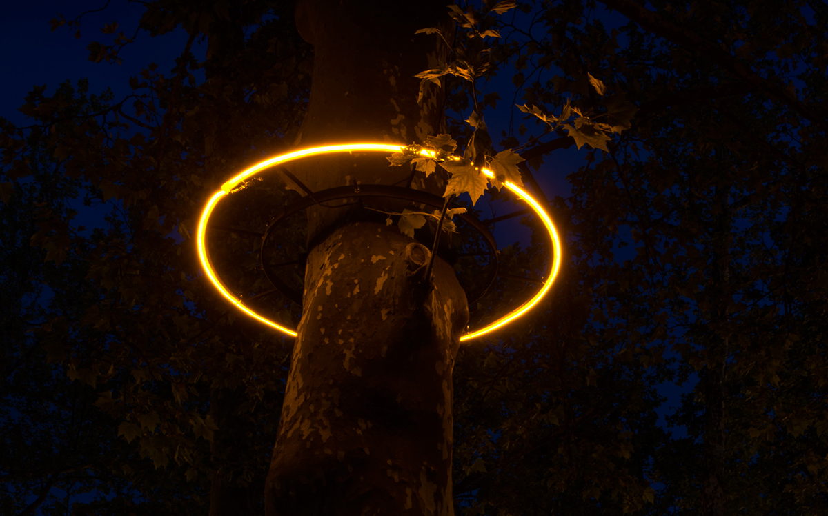 Light Halo Closeup Tamar Frank Light Art Installation