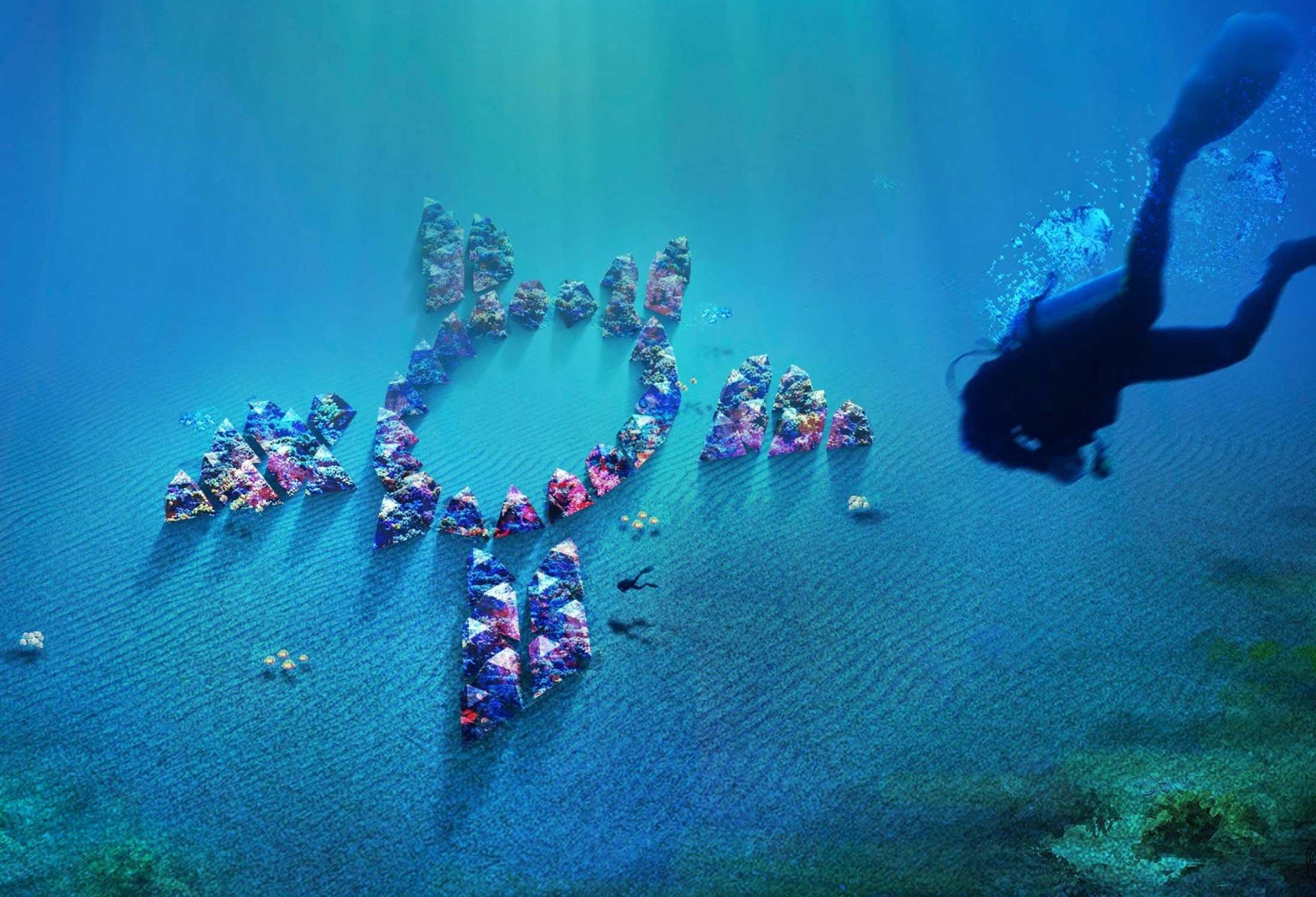 La tortuga, Proyecto Art Reef en Naples Florida Vito Di Bari