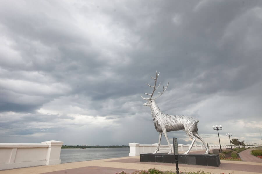 Wide lens view of Gabor Szoke's Russian Deer sculpture